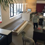 Renovations at the Lett Architects Office